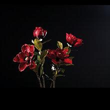 花艺仿真花假花饰品香薰