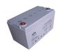 双登6-GFM-100信号系统铅酸免维护蓄电池