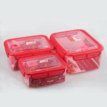 厂家直销572丰悦长方形三套庄保鲜盒野外露营便当盒密封冷冻塑料保鲜盒食物收纳盒