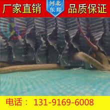 厂家直销鳝巢人工鳝巢穴水池养殖大规模养鳝S波蜂窝式鳝穴量大从优图片