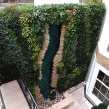 专业的植物墙设计公司承接酒店商场植物墙的制作施工价格行情质量有保证售后服务周到
