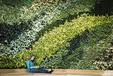 厦门公司logo形象绿墙植物背景墙设计制作施工高档的室内植物墙价格实惠