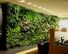深圳植物墙店面植物墙店铺门面植物绿墙深圳植物背景墙上门测量设计制作安装