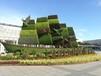 福建绿雕福州主题绿雕设计施工大型会议主题立体花坛工程