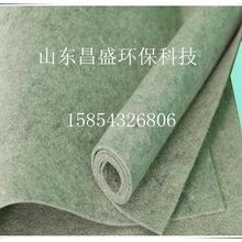 山东昌盛供应涤纶长纤滤布,涤纶短纤滤布图片