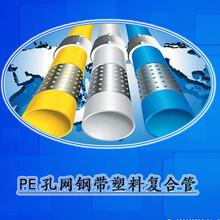 孔网管孔网管价格,批发,采购,图片国标pe孔网钢带塑料复合管煌盛专业20年图片