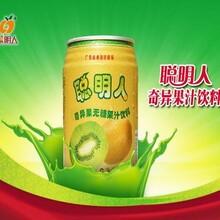 聪明人果汁饮料猕猴桃果汁饮料厂家供应图片