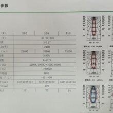 LED高顶灯:FGN-T550200W/300W/450W