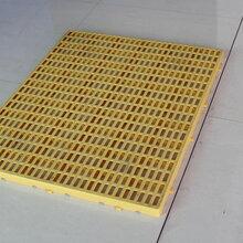 深圳阳程塑胶托盘塑料卡板地垫板防潮板10.60.05M厂家直销