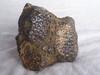 陨石在哪鉴定现在市场值钱