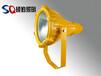 防爆灯led新型节电辐射照明灯
