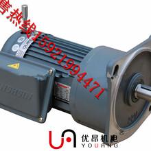 湖北武汉直销GV22-400W-3S万鑫齿轮减速马达