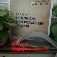浙江杭州福莱特高品质软瓷软瓷价格——实力很雄厚技术很成熟