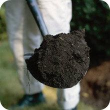 土壤检测报告以及土壤检测项目图片