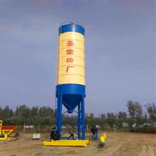 直销供应大型立式水泥仓封闭式干粉原料储存罐散装水泥仓