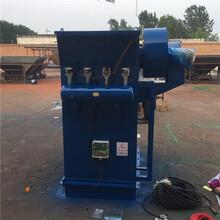 专业生产搅拌楼仓顶除尘器布袋式仓顶除尘器空气进化器