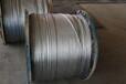 热镀锌钢绞线厂家