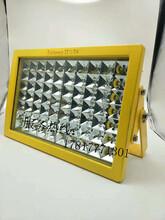 ZL8920防爆LED灯供应ZL8920LED防爆投光灯100W厂家