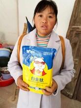广西日长四斤育肥猪白金肽图片
