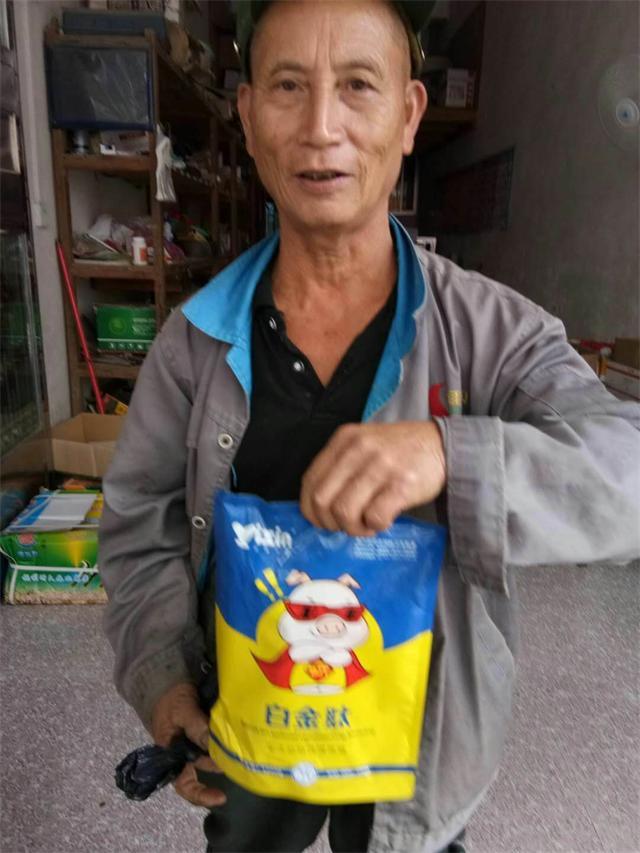 贵州高效猪催肥猪如何催肥