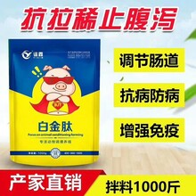 广东仔猪白金肽治疗拉密效果怎样样白金肽兽药的效果图片
