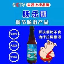 广东小猪腹泻怎样办仔猪腹泻最佳治疗法图片