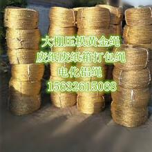 生产黄金塑料绳大棚压膜绳黄金塑料绳大棚压膜绳批发图片