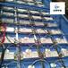 厂家直供实验室废气处理装置硫化氢废气臭气处理工业废气净化器