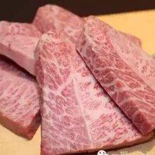 全国牛羊肉和牛牛肠羊排青岛谢记食品批发图片