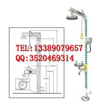 电伴热型洗眼器紧急处理防冻型洗眼冲淋装置厂家直销BD-590