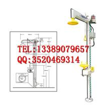 防爆报警电伴热型洗眼器WELKENBD-580C紧急喷淋装置验厂贝迪