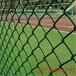 现货供应体育场围栏校园围栏球场围网欢迎选购