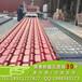 供应廊坊市合成树脂瓦厂家直销国标3.0