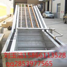 厂价直销大枣清洗流水线清洗机设备专业制造商高效节能