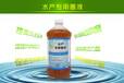 益富源em菌液养殖海参时所添加的用量是多少