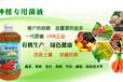 云南怒江丽江迪庆有卖养殖冬虫夏草的益生菌菌种吗什么价位