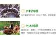 速肥壮兽用益生菌微生物促长菌什么价格湖北福州南昌赣南
