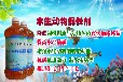 绍兴翟州商丘洛阳黄鳝养殖每亩地洒多少益富源水产菌液