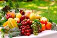农作物果树白粉病黄叶病用那种叶面肥效果好什么价格