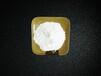 硅微粉熔融硅微粉石英粉