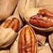 堅果炒貨核桃長壽果保健食品廠家直銷特價批發