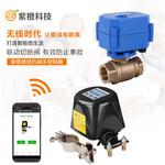 智能化灌溉浇花系统无线电动阀价格wifi电动阀开关控制器