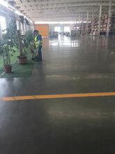 东莞市沙田镇厂房地面起灰怎么办?工厂水泥地起尘处理、行家里手图片