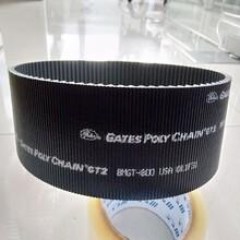 供应进口gater/盖茨保力强8MGT-800高温耐磨现货批发