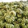 安徽芜湖市香蕉保鲜冷藏库厂家建设