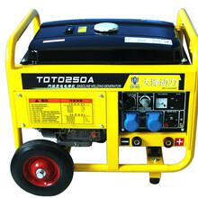250a汽油发电电焊机价格大泽动力