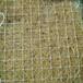 山东德州麻椰固土毯环保草毯生态护坡专用草毯