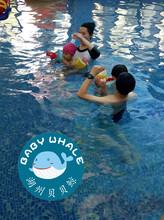 小孩怎样学游泳_湖州贝贝鲸儿童游泳培训+儿童早教