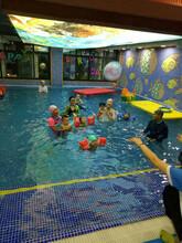 湖州婴幼儿游泳_贝贝鲸婴儿游泳馆水质保证