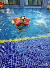 湖州小学生学游泳_德国贝贝鲸儿童游泳培训